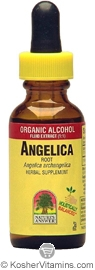 Natures Answer Kosher Angelica Root 1 OZ
