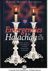 Book Emergencies in Halachah on Shabbos 1 Book