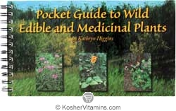 Motherlove Pocket Guide to Wild Edible and Medicinal Plants by Kathryn Higgins 1 Book