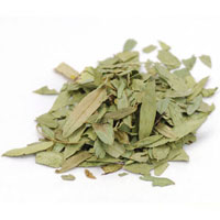 StarWest Botanicals Kosher Senna Leaf Whole 16 OZ.